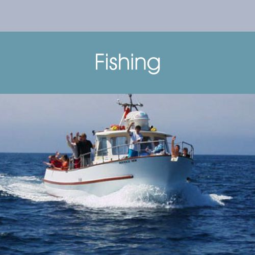 Plymouth Boat Trips - Fishing Link